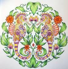 Finished 5 2 2017 Source Lost Ocean Johanna Basford Adult ColoringColoring BooksColouringJohanna BasfordPrismacolorPencilSecret Gardens