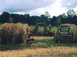 Pumpkin Patch Mobile Al 2015 by North Alabama U0027s 2015 Guide To Pumpkin Patches Corn Mazes And