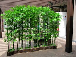 bamboo flower planters designing with bamboo garden design