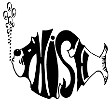 Bathtub Gin Phish Live by Grateful Music Publications Phish March Madness 64 Song Tourney