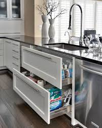 Advance Designing Ideas For Kitchen Interiors Kitchen Designs Two Drawers Sink