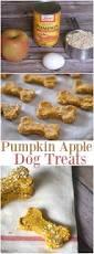 Too Much Pumpkin For Dogs Diarrhea by Three Ingredient Pumpkin Dog Treats That Fido Will Love Pumpkin