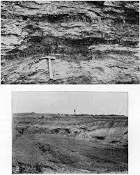 Coal Beds Originate In by Kgs Bulletin 24 Southeastern Kansas Coal Field Stratigraphy