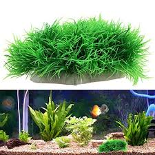 Spongebob Aquarium Decor Amazon by 83 Best Fish Tank Ideas Images On Pinterest Fish Tanks Pet