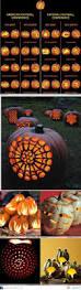 Cool Pumpkin Carving Ideas by 63 Best Pumpkin Decorating Images On Pinterest Halloween