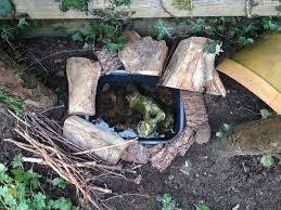 How To Make A Mini Frog Pond – The Small Gardener Frog Lodge Gabe Feathers Mcgee The Whisper Folks How To Create A Wildlife Pond Hgtv Building Ogfriendly Build On Budget Youtube Backyard Home Landscapings Ideas Garden Diy Project Full Video To Make Chickadee Habitat Design And Build Wildlife Pond Saga For Frogs Part 5 Outdoor Patio Cute Round Koi Mixed With
