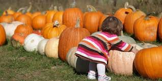 Where Did Pumpkin Patch Originate by 25 Pumpkin Patches In Alabama You Need To Visit This Fall
