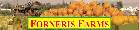 Pumpkin Patch Fresno Ca Hours by Pumpkin Patch In Mission Hills California Forneris Farms