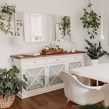 pflanzenliebe esszimmer couchstyle pflanzen zimmerp
