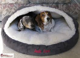 Cozy Cave Dog Bed Xl by Cozy Cave Dog Bed Extra Large Best Cave Dog Beds And Costumes