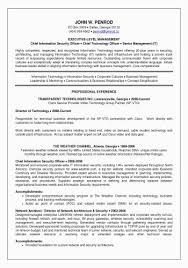 Gallery Of It Director Resume Examples 29 Free Download