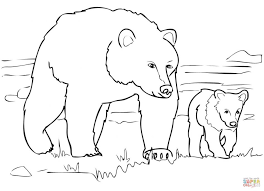 Bears Coloring Pages Brown Bear Stands In Shallow Water Care Animal Page