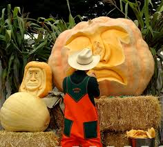 Atlantic Giant Pumpkin Growing Tips by A Very Pumpkin Weekend The Real Time Farms Blog
