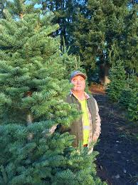 After This Years Customers Cut Down Around 200 Christmas Trees He Doesnt Have Enough Seedlings To Plant Back