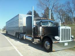 Pin By Sathakilgore On Custom Trucks   Pinterest   Rigs, Peterbilt ... 2018 Peterbilt 337 Tampa Fl 5003263999 Cmialucktradercom Kansas City 2015 Bright White Jeep Wrangler Unlimited Custom 4 5 Truck One Source Revitalizing Citys Industrial Refrigerated Trailer Rental St Louis Pladelphia Cstk 2004 Sterling Lt7501 Cab Chassis For Sale Auction Or Lease Westfall Gmc Serving Gladstone Liberty Mo Equipment Announces Supply Agreement With Richmond Bethannesboutique2vehiclewraps Graphic Design Services In Installation Roadside Service 911rr 104 Magazine Todays Trucker Outside The Box Trucks For Unique Businses Apex Specialty Vehicles