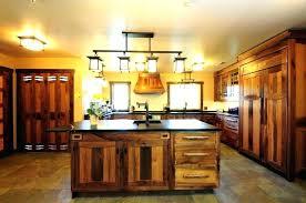 home depot kitchen light fixtures bloomingcactus me