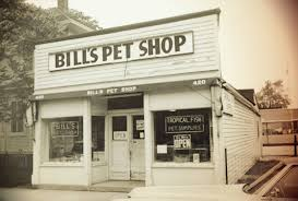 Bill's Pet Shop | Racine History The Worlds Best Photos Of Arena And Gophers Flickr Hive Mind Historic American Buildings Survey During The New Deal Era Talbot House Permanent Exhibition Review Sunflowerfest 2015 Saturday 1st August Gigging Ni Us Highway 14 Minnesota Prairie Roots Page 2 Albion Bath Company Tubby Torre Onic Freestanding Teletubbies Svenska Ssong 9 Episod 216 Visar Fr Barn Things To Do Smith Dancing In Locker Room After Gophers Beat Badgers Abbeys Articulate Artistry
