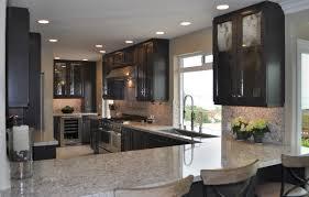 Dark Maple Cabinets Contemporary Kitchen