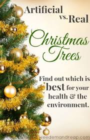 Best Kinds Of Christmas Trees by Artificial Vs Real Christmas Trees Find Out Which Is Best