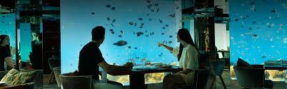 100 Anantara Kihavah Villas Underwater Restaurant In Maldives Sea
