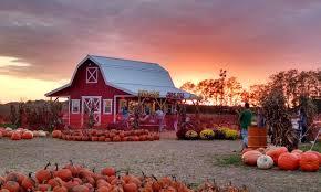 Pumpkin Patches Maryland Heights Mo by Pumpkin Patch And Corn Maze Fun Farm Pumpkin Patch Groupon