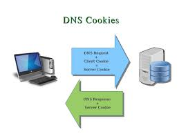 What Is DNS? – Baba Host How To Use Our Dns Hosting Record Management Preguntes Freqents Computehost Reviews Bitcoin Bittrustorg Top 5 Best Providers Of 2017 Stratusly Do I Manage My Records Hetzner Help Centre Host Your Site In Amazon S3 And Link To Domain Via Route53 Cloudflare Wants Update Registration Model Automate Create A Noip Dynamic Account Answer Netgear Support Godaddy Cname Mx For Zoho Mail Free Bhost Vps With Unmetered Bandwidth Google Cloud Alternatives Similar Websites Apps Looks Like Someone Forgot Renew Their Hosting Service