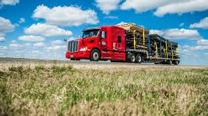 100 Palmer Trucking Paid CDL Training Real Experience Real Careers