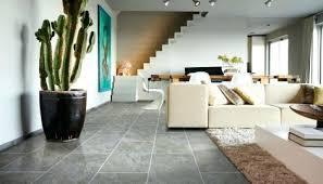 Flooring Ideas For Living Room Slate