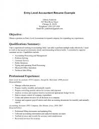 100 Resume Summary Examples Entry Level Bookkeeper Sample 6 Accounting