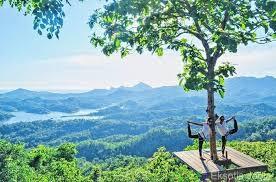 Menjajal Wisata Alam Kalibiru Kulon Progo