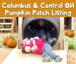 Pumpkin Patch Toledo Ohio by Best 25 Pumpkin Patch Columbus Ohio Ideas On Pinterest