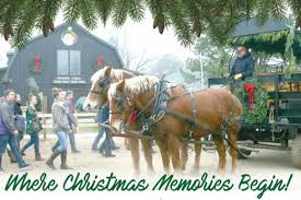 Free Family Holiday Activities At Prairie Pines Christmas Tree Farm In Wichita KS