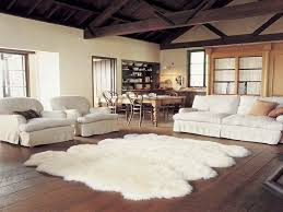 collection in living room rugs ideas simple modern interior ideas