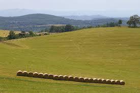 chambre d agriculture ariege l agriculture ariégeoise terres d ariège