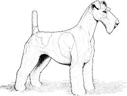 Unique Dog With A Blog Coloring Pages 84 Additional Seasonal Colouring