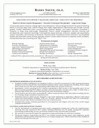 Executive Director Resume Template Sample Management Agreatresume With