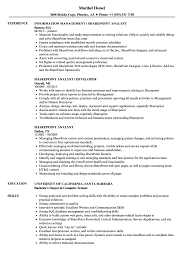 Download Sharepoint Analyst Resume Sample As Image File