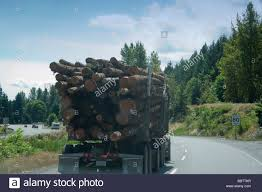Semi Truck Hauling Timber On Highway Vancouver Island British Stock ... Bb T Trucking Wv Best Truck 2018 The Worlds Most Recently Posted Photos Of Scotland And Truckshow Trucks 2015 Flickr Bbt Becker Bros Inc Home Facebook Photos Billybowie Truck Hive Mind Forthright Jamess Teresting Picssr Benton Brothers Boston N55 13 Lady Lynnmarie Mercedes Double Drop Float Pin By Lr27rl04 On Brummis Zum Geld Verdien Pinterest Towing