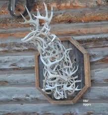 sheda how to make a shed antler trap