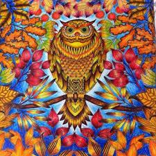 De16c24c3dcaee4cc47bcd2ca3a72785 480x480 Secret Garden ColouringGarden OwlGarden
