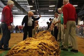 Mock Tobacco Auction On Friday Allows Fairgoers To 'follow Sale' 282 Mt Horeb Road Georgetown Ky The Prather Team Wi Barns For Sale On 10 To 20 Acres New Old Farmhouses Fire In Colerain Township Destroys Tobacco Barn Herald And Chronicle For Used Vintage Wisconsin Barn Casey County Kentucky Farm Land By Owner 100year Old Converted Into A Cabin North Carolina Filetobacco Barnjpg Wikimedia Commons The Tobacco Pentaxforumscom 2100 Dr Sw Huntsville Al Trulia Historic Chester Cversion 1705 Paoli Pike Pumpkin Patch Tour And A Tobacco Barn Talepetticoat Junktion