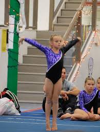 girls gymnastics level 5 howtheyplay