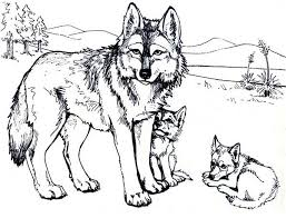 Wolf With Baby Wolfs Coloring Pages Printable And Book To Print For Free Find More Online Kids Adults Of
