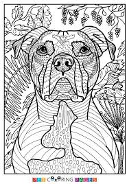 Coloring Pages Of Pit Bulls Pitbull Sheets L Dessincoloriage