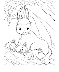 Farm Animal Coloring Page Rabbit Pages Featuring Mommy And Her Baby Rabbits Sheets