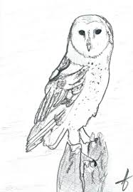 Saatchi Art: Barn Owl In Graphite Drawing By JD Duran Country Barn Art Projects For Kids Drawing Red Silo Stock Vector 22070497 Shutterstock Gallery Of Alpine Apartment Ofis Architects 56 House Ground Plan Drawings Imanada Besf Of Ideas Modern Best Custom Florida House Plans Mangrove Bay Design Enchanted Owl Drawing Spiral Notebooks By Stasiach Redbubble Top 91 Owl Clipart Free Spot Drawn Barn Coloring Page Pencil And In Color Drawn Pattern A If Youd Like To Join Me Cookie