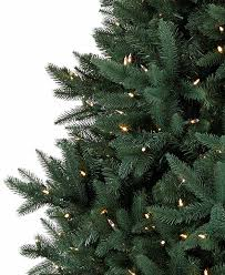 Silvertip Fir Christmas Tree by The Great Christmas Tree Giveaway A 1000 Value Less Than