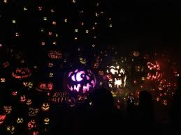 Maze Pumpkin Patch Evansville In by Five Things To Do This Fall In The Tri State