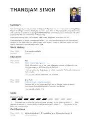 Process Associate Resume Example