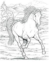 Spirit Horse Coloring Pages Horses Page
